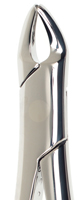Picture of Precision UK Pattern Forceps No. 138 (Child) (Children's upper anteriors, premolars and roots)